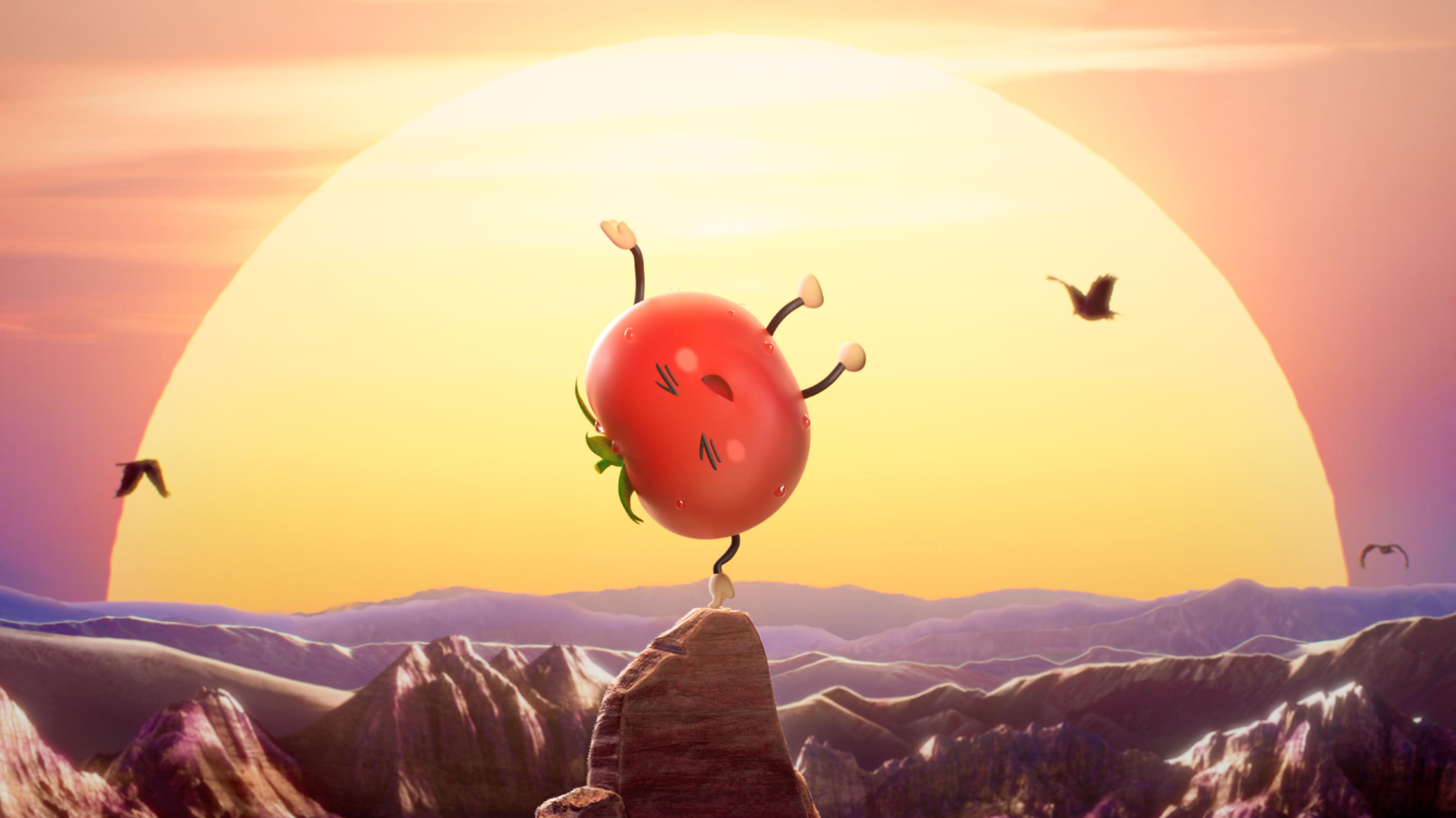 Tomato King_1