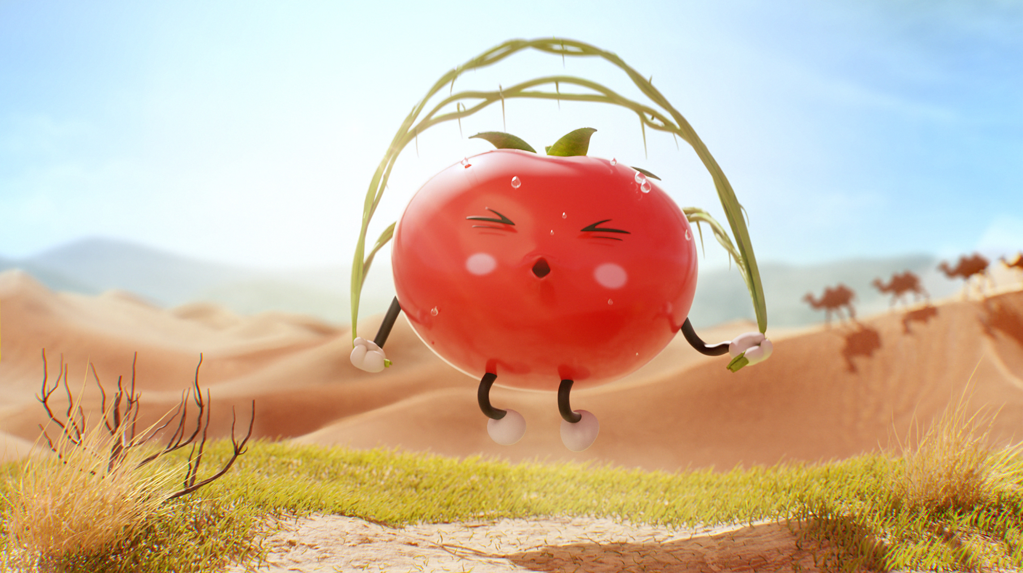 Tomato King_2
