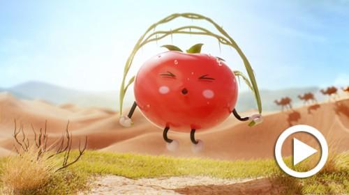 Tomato King_thumbnail